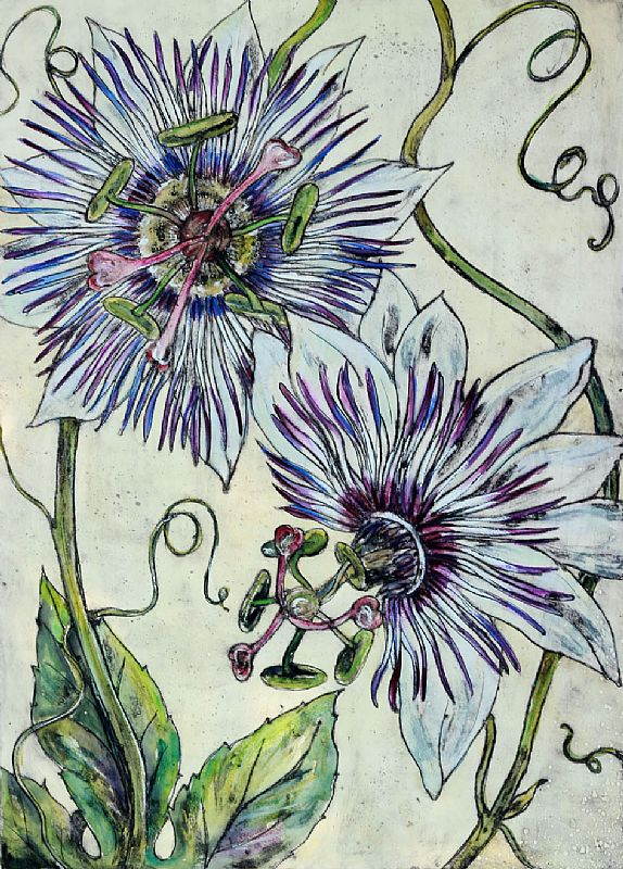 Vicky Oldfield - Passion Flower 3/10